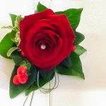 Button Hole Red Rose